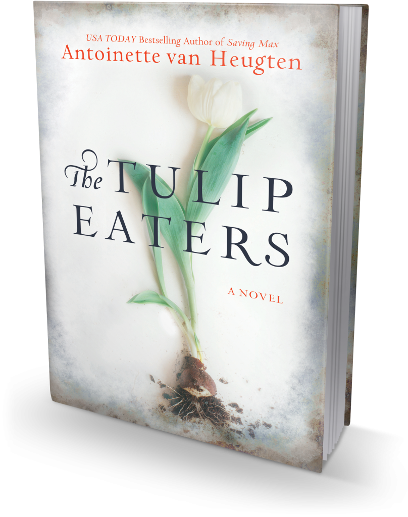 tulip-3d
